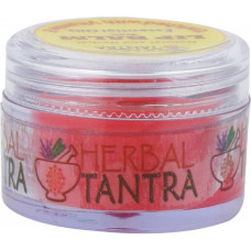 Herbal Lip Balm Raspberry With Vitamin E Raspberry  (Pack of: 1, 8 g)